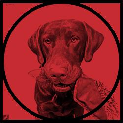 Website Image Logo for subllum · ricard planas camps